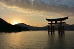 Magické Japonsko, rozkvetlé sakury a cestovně jógový retreat